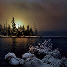In The Low Light by Charles &amp; Patricia   Harkins ~ Picture Oregon
