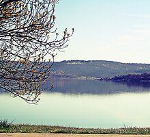 Lake Jindabyne by NinaJoan
