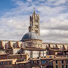 Siena Landscape 2 by MarceloPaz