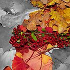 Autumn Leaves  by Jacqueline Longhurst