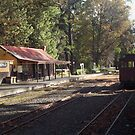 Emerald Railway( Puffing billy) by jem16