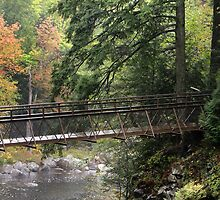 Bridge Over the Gorge - High Falls Gorge, Lake Placid New York by Debbie Pinard
