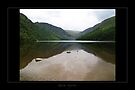 Glendalough - Lake2 by Roberta Angiolani
