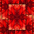 Red Dahlia-Layered Reflection by onyonet photo studios