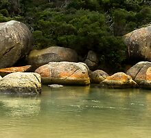 Tidal River Wilsons Promontory by Melissa Dickson