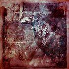 Nevermore by David Atkinson
