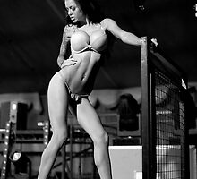 Stacey Lacey by Luke Stevens