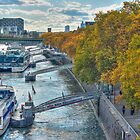 Rhine Promenade in autumn by Markus Landsmann
