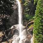 Grizzly Falls by mcstory