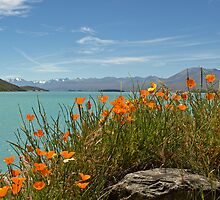 Lake Tekapo by joergilmaz