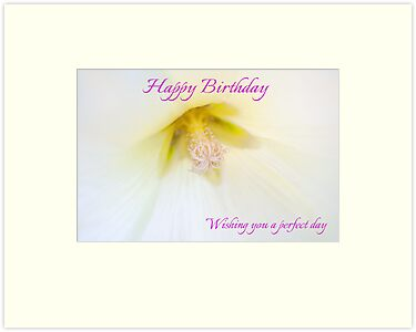White Petunia Birthday Card by Ellesscee