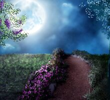 Moonlit Path by Tiffany Muff