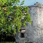 Blackbeard's Tower in Eastern Nassau, The Bahamas by 242Digital