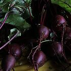 Harvest of Beets by Kathi Arnell