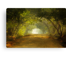 Come, walk with me!!! Canvas Print