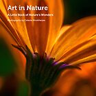 My book, Art in Nature by Celeste Mookherjee