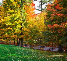 Autumn Colours 4 - MacKenzie-King Estate by Yannik Hay