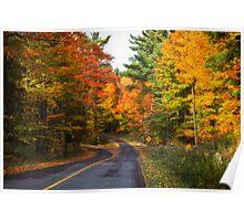 Autumn Colours 5 - MacKenzie-King Estate Poster