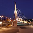 Provencher Bridge at Night by winnipegmike
