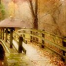 Bridge in the Woods by Nadya Johnson