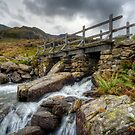 Wooden Bridge by Adrian Evans