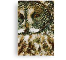 The Glaucus Owl Canvas Print