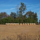 Hay Bales From A Distance by Patricia Mills