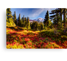 Spray Park Canvas Print