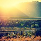 The Grand Tetons at Sunset by Michele Jensen