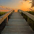 Bridge to The Sun by Ticker