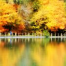 Fall at Lake Loon by Brian Gaynor