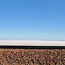 Journey to Lake Eyre #04 by HelenThorley
