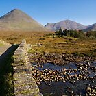 Sligachan Bridge, Skye by fg-ottico