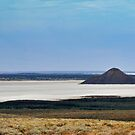Journey to Lake Eyre #06 by HelenThorley