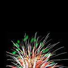 Peacock Fireworks by Ommik