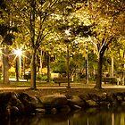 Park at night by hugamikey
