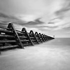 Naze Groyne by Steve Carter