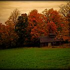 Abandoned Shack in the Woods ~ Vintage Photography by Chantal PhotoPix
