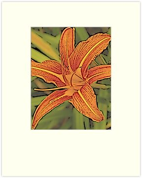 Another modified day lily by Faan Kuypers