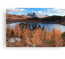 Autumn in high altitude III Canvas Print