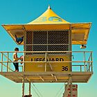 Far-horizons and Jewel-Sea by David Byrne