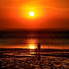 Summers First Sunset by Tainia Finlay