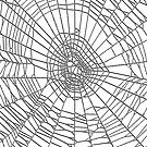 Spider Web Invert by Marvin Hayes