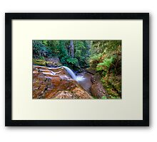 Cascade 3 above Liffy Falls Framed Print