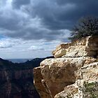 Grand Canyon view, AZ. by Onehun