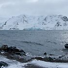 Ezcurra Inlet by Withns