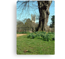Magdalen College Tower Canvas Print