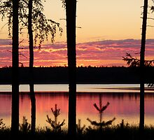 Finnish sunset by Federica Gentile