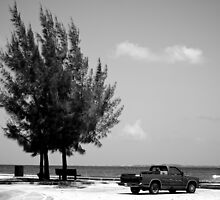 Black and White Beach  by chefry84