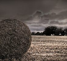 Harvest Time Norfolk England by Paul Holman